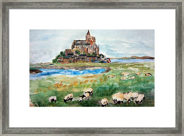 Sheep Grazing At Mont Saint Michel Framed Print