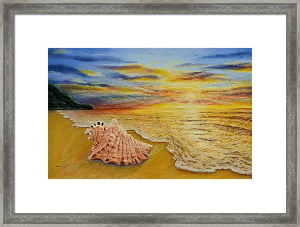 Shell At Sunset Framed Print