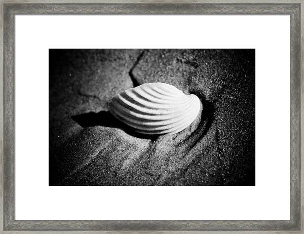 Framed Print featuring the photograph Shell On Sand Black And White Photo by Raimond Klavins