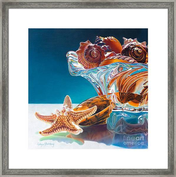 Shell Shocked Framed Print by Arlene Steinberg