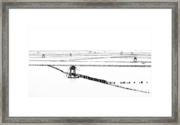 Shellfish Farm Framed Print