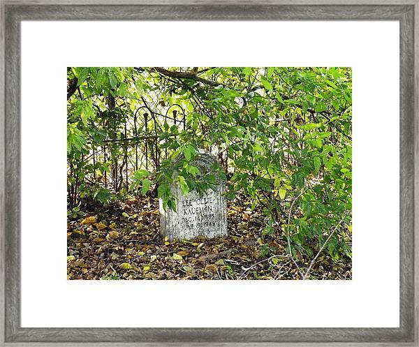 Sheltered Grave Framed Print