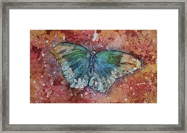 Shimmer Wings Framed Print