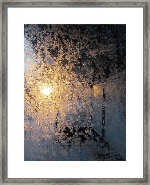 Shines Through And Illuminates The Day Framed Print