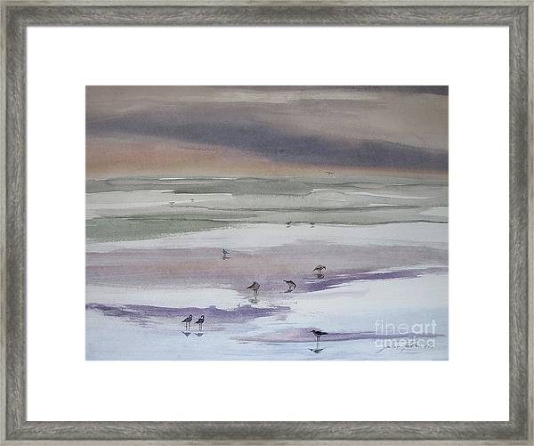 Shoreline Birds II Framed Print