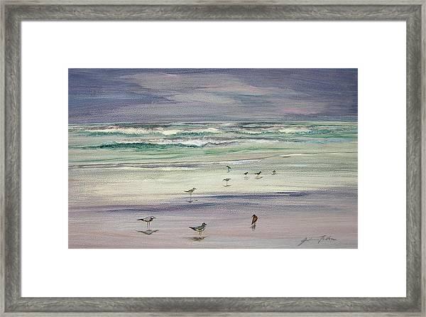 Shoreline Birds IIi Framed Print