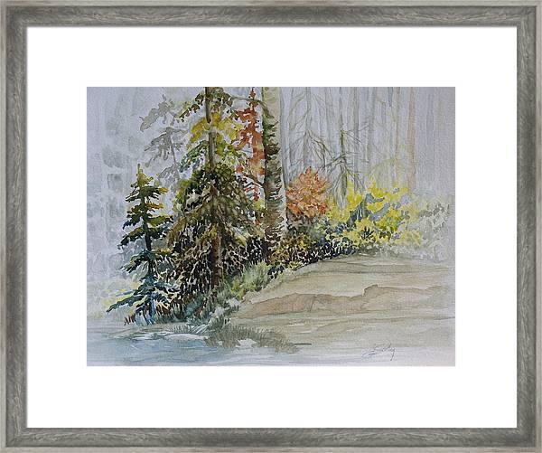 Shoreline Sketch Framed Print
