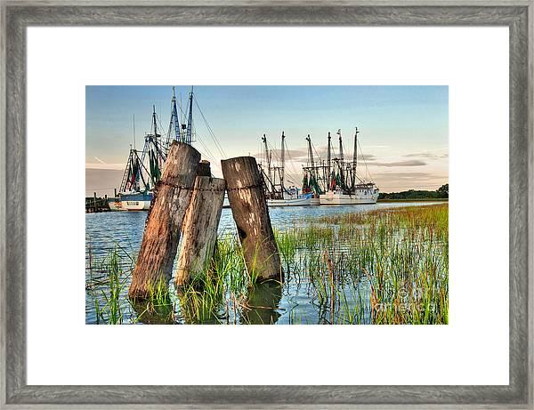 Shrimp Dock Pilings Framed Print