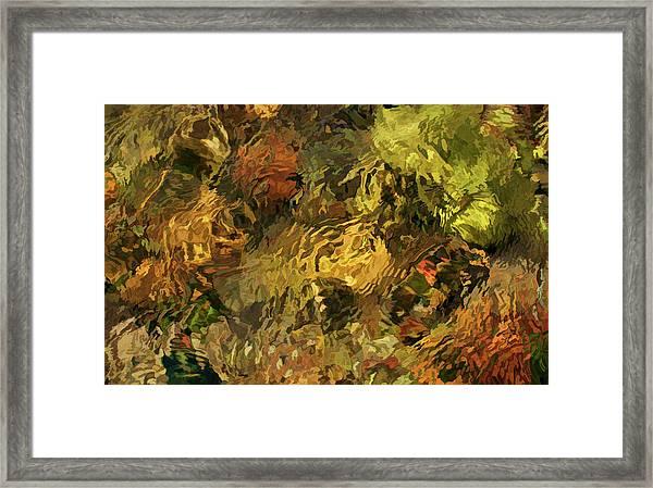 Sight Stream Framed Print