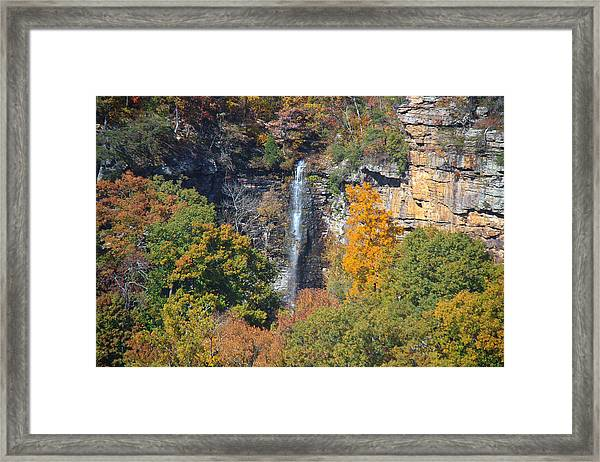 Signal Fall Framed Print