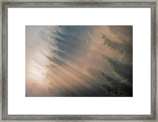 Signs Of Autumn Framed Print