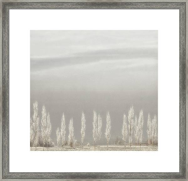 Silent World Framed Print