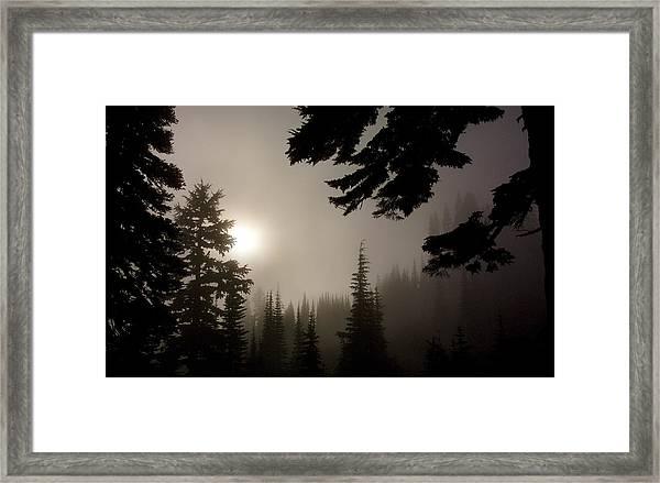 Silhouettes Of Trees On Mt Rainier Framed Print
