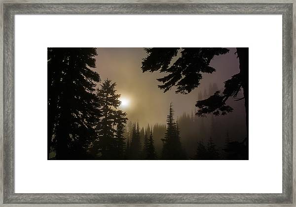 Silhouettes Of Trees On Mt Rainier II Framed Print
