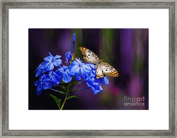 Framed Print featuring the digital art Silver And Gold by Lois Bryan