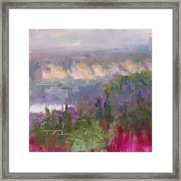 Silver And Gold - Matanuska Canyon Cliffs River Fireweed Framed Print