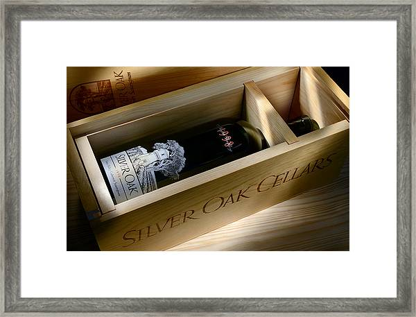 Silver Oak  Framed Print