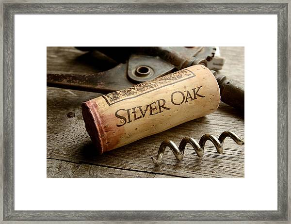Silver On Silver Framed Print