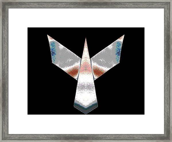 Silver Plane Framed Print