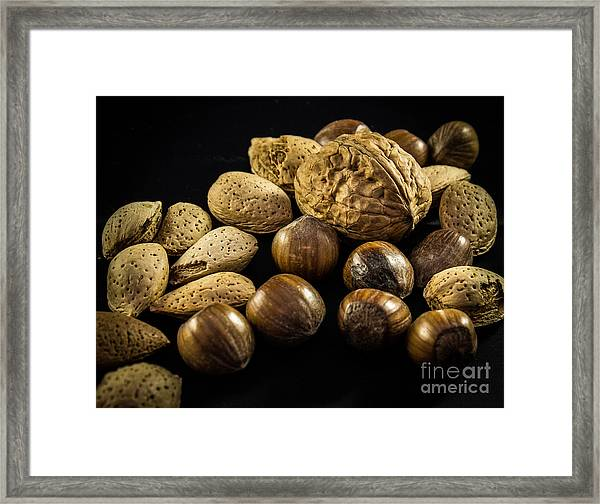 Simply Nuts Framed Print