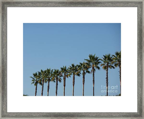 Simply Palms Framed Print