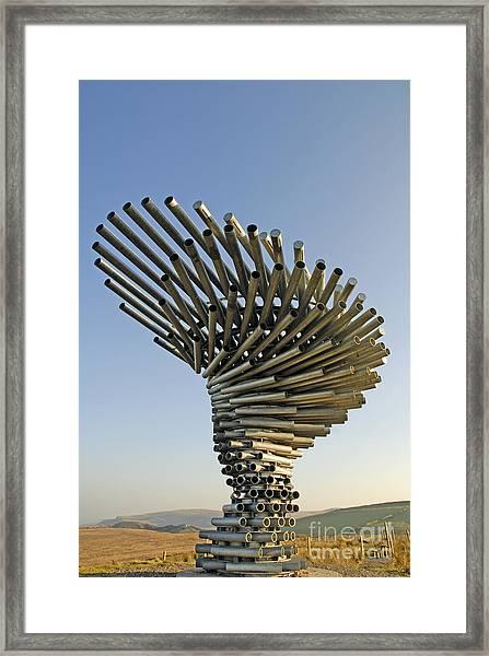 Singing Ringing Tree Framed Print