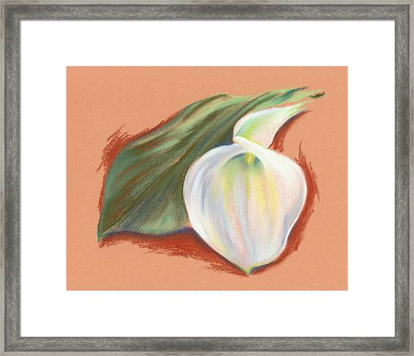 Single Calla Lily And Leaf Framed Print