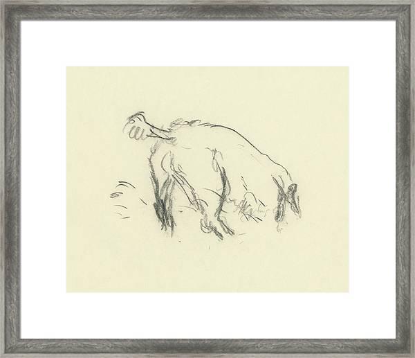 Sketch Of A Dog Digging A Hole Framed Print