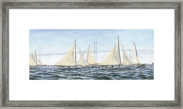 Skipjacks Racing Chesapeake Bay Maryland Framed Print
