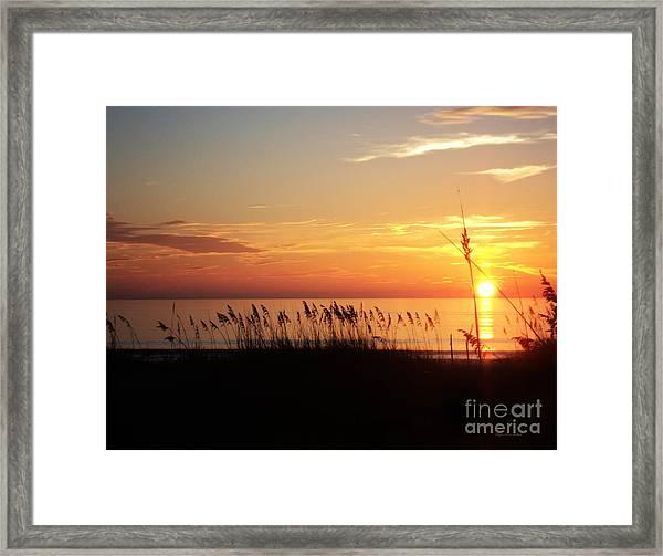 Skylight Framed Print