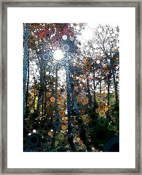 Skyway Forest At Dawn Framed Print