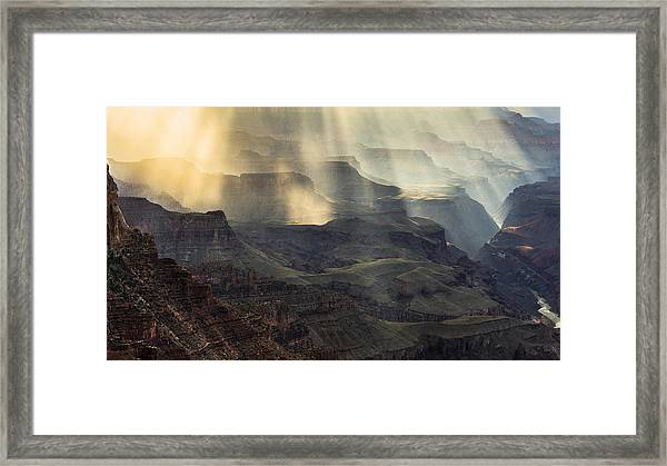 Slave Of Light Framed Print