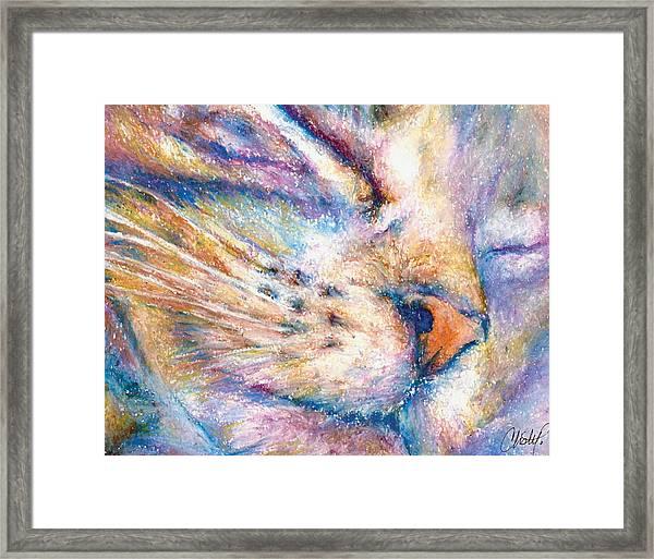 Sleeper Kitty Framed Print