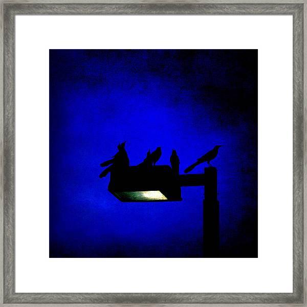 Sleepless At Midnight Framed Print
