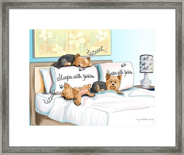 Sleeps With Yorkies Framed Print
