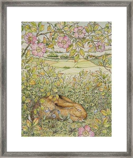 Sleepy Bunny Framed Print