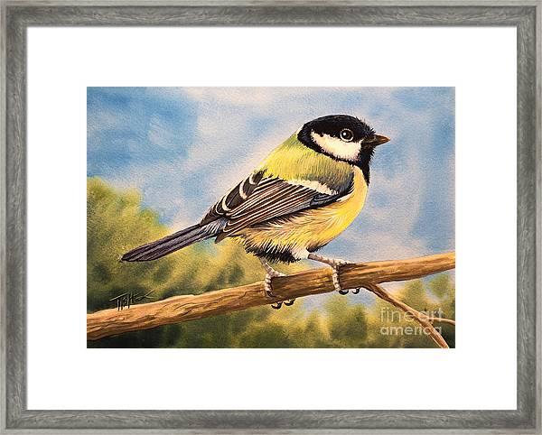 Small Bird Framed Print