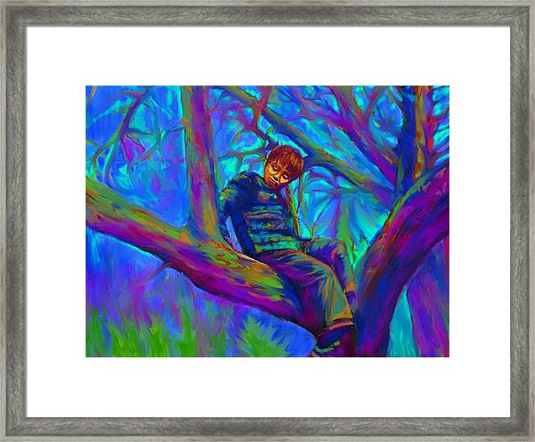Small Boy In Large Tree Framed Print