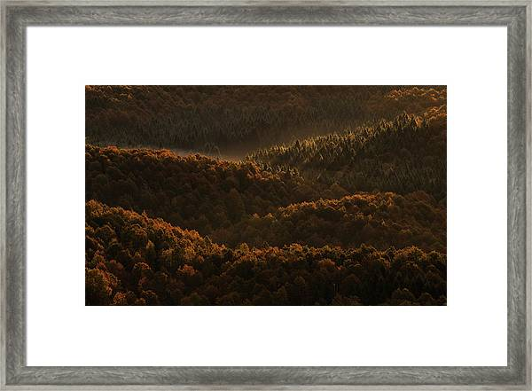 Small Details Makes The Difference Framed Print