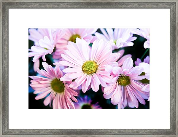 Smiling At You Framed Print
