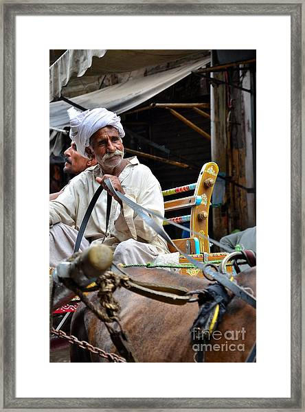 Smiling Man Drives Horse Carriage In Lahore Pakistan Framed Print