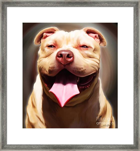 Smiling Pit Bull By Spano Framed Print