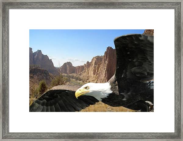 Smith Rocks Eagle Framed Print