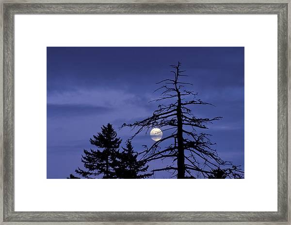 Smoky Moon Framed Print