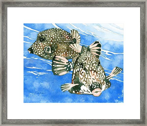 Smooth Trunkfish Pair Framed Print