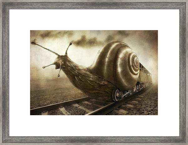 Snail Mail Framed Print