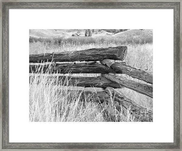 Snake Fence  Framed Print