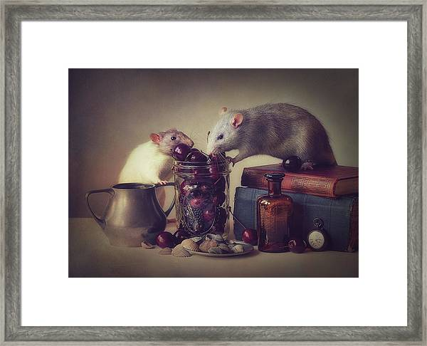 Snoozy And Jimmy Framed Print