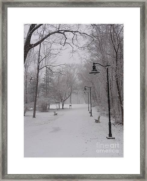 Snow At Bulls Island - 29 Framed Print