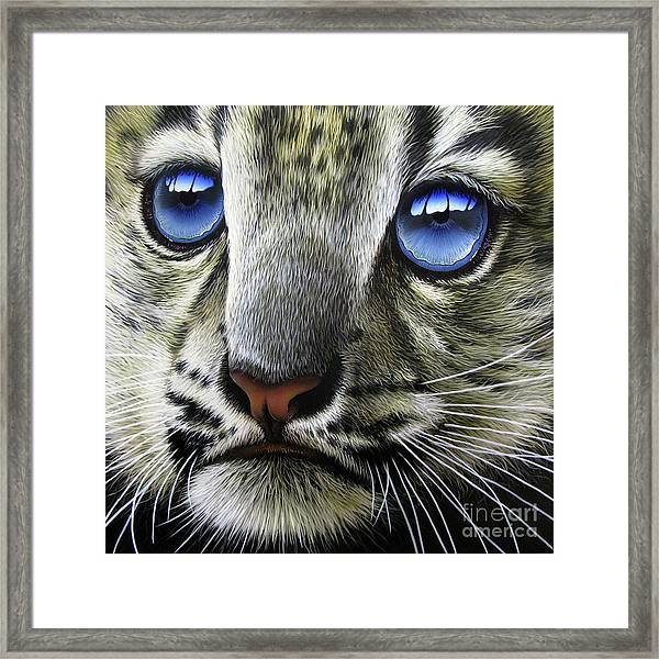 Snow Baby Framed Print